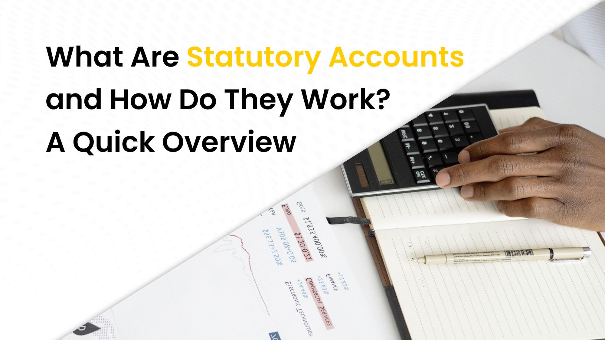 Statutory Accounts